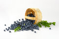 Blueberries In Basket Stock Images - 70747464