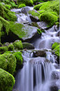 Green Waterfalls Royalty Free Stock Photography - 70748107