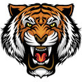 Angry Tiger Face Royalty Free Stock Photos - 70770388