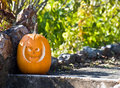 Jack - O - Lantern Royalty Free Stock Images - 7088619