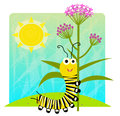 Monarch Caterpillar Holding Flower Stock Images - 70840054