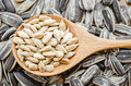 Sunflower Seeds In Wooden Spoon. Royalty Free Stock Photo - 70867355