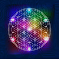 Sacred Geometry  5 Royalty Free Stock Photography - 70916147