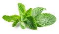 Fresh Raw Mint Leaves Isolated On White Stock Photo - 70932120