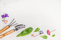Garden Tools And Parts Of Plants And Flowers On Light Background, Top View, Place For Text Royalty Free Stock Image - 70998526