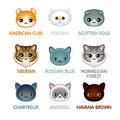 Cute Cat Icons, Set II Royalty Free Stock Image - 71088996