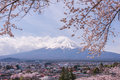 Mountain Fujiyama, A Remarkable Land Mark Of Japan In A Cloudy Day With Cherry Blossom Or Sakura In The Frame. The Picture Of Spri Stock Photos - 71155043