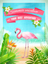 Flamingo Bird Exotic Summer Vacation Poster Royalty Free Stock Image - 71170006