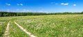 Panorama Of A Summer Landscape With The Field Royalty Free Stock Photography - 71187287