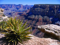 Grand Canyon Royalty Free Stock Images - 7125699
