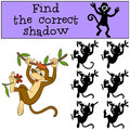 Children Games: Find The Correct Shadow. Little Cute Monkey. Stock Images - 71221914
