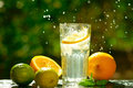 Fresh Water With Lemon, Lime And Mint Royalty Free Stock Photo - 71289695