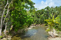 Landscape Of A Wild Stream In Daintree National Park Queensland Stock Photos - 71293493