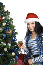 Christmas Night Royalty Free Stock Images - 7139209
