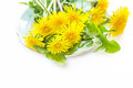 Yellow Dandellion Flowers On A Plate, Close Up Stock Images - 71310534