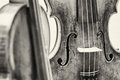 Violin Stock Images - 71319974