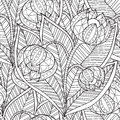 Hand Drawn Artistic Ethnic Ornamental Patterned Floral Frame  Stock Photography - 71356992