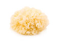 Chinese Food Tremella Fuciformis White Fungus Isolated Stock Images - 71359744