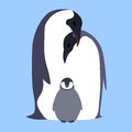 Vector Flat Illustration Penguin Family. Royalty Free Stock Photography - 71506857