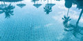 Reflection Of Palm Trees On The Water Of A Swimming Pool Stock Image - 71577671