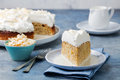 Three Milk Cake, Tres Leches Cake With Coconut. Traditional Dessert Of Latin America. Stock Photography - 71583502