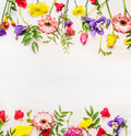 Frame From A Variety Of Spring  Summer Flowers, Space For Text Stock Images - 71614704