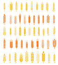 Wheat Ears Icons And Logo Set Natural Product Company And Farm Company Organic Wheat, Bread Agriculture And Natural Eat. Royalty Free Stock Image - 71656886