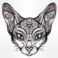 Vintage Ornate Cat Head With Tribal Ornaments. Royalty Free Stock Photos - 71670748