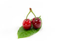 Isolated Cherry Fruit Stock Images - 71696434