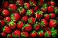 Strawberries Pile In Wooden Box Stock Photos - 71732693