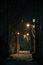 Dark City Alley Stock Images - 71780104