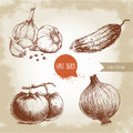 Set Of Hand Drawn Vegetables. Tomatoes, Onion, Cucumber And Garlics. Stock Photos - 71881553