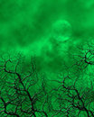 Green Spooky Background Royalty Free Stock Images - 7196829