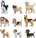 Set Purebred Dogs Royalty Free Stock Image - 71912856