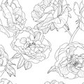 Vector Floral Seamless Pattern. Black And White Background With Outline Hand Drawn Rose Flowers. Royalty Free Stock Images - 71949309