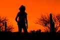 Hiker Silhouette Royalty Free Stock Photos - 71976228