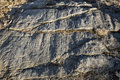 Glacial Grooves In Granite Bedrock, Legacy Of The Ice Age. Stock Images - 71990144