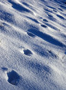 Footprints Royalty Free Stock Images - 726019