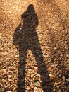 My Shadow Royalty Free Stock Images - 7204749