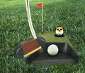 Golf(Putting Practice) Royalty Free Stock Photography - 7218727