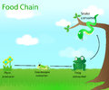 Food Chain Royalty Free Stock Photo - 72127125