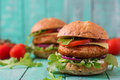 Big Sandwich - Hamburger With Juicy Chicken Burger Royalty Free Stock Photos - 72152128