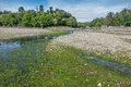 Des Moines Shoreline Stream Stock Photo - 72204540