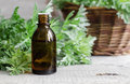 Small Bottle Of Essential Wormwood Oil Royalty Free Stock Photography - 72299727