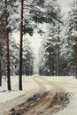 Winter Road To A  Wood Stock Photo - 7231540