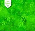 Green Spring And Summer Background Royalty Free Stock Photo - 72300395