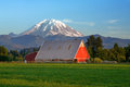 Red Barn And Mt Rainier Royalty Free Stock Images - 72315239