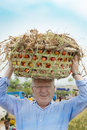 European Man Carries Tomato Basket On Head Like African Women Do Royalty Free Stock Photo - 72407605