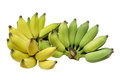 Cultivated Banana Or Thai Banana Isolated On White Background Royalty Free Stock Photos - 72430478