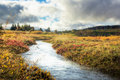 Beautiful River During Autumn Royalty Free Stock Image - 72458386